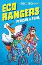 Eco Rangers: Pelican in Peril