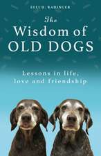 Wisdom of Old Dogs