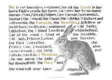 Jackie Morris The Names of the Hare Poster