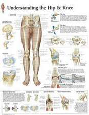 Understanding the Hip & Knee Chart: Laminated Wall Chart