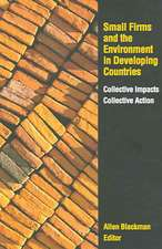 Small Firms and the Environment in Developing Countries:  Collective Impacts, Collective Action