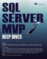 SQL Server MVP Deep Dives:  Toon Level 2