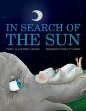 In Search of the Sun
