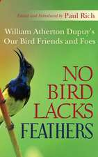 No Bird Lacks Feathers