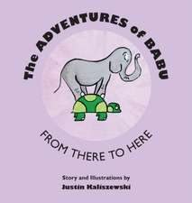 The Adventures of Babu: From There to Here