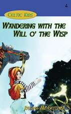 Wandering with the Will O' the Wisp:  Shadow Over Shandahar