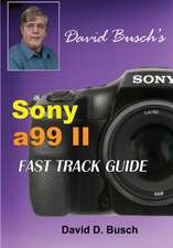 DAVID BUSCH'S  Sony Alpha a99 II FAST TRACK GUIDE