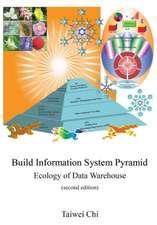Build Information System Pyramid