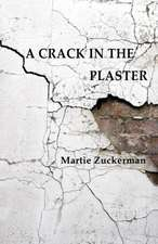 Crack in the Plaster