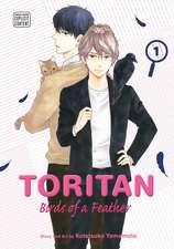 Toritan: Birds of a Feather, Vol. 1