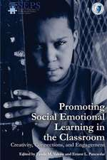 Promoting Social Emotional Learning in the Classroom