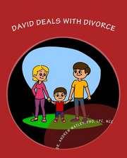David Deals with Divorce