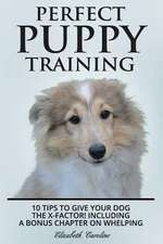 Perfect Puppy Training