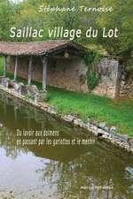 Saillac Village Du Lot