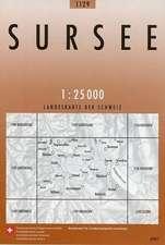 Swisstopo 1 : 25 000 Sursee