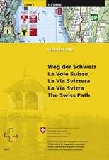 Swisstopo 1 : 25 000 Weg der Schweiz