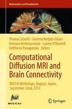 Computational Diffusion MRI and Brain Connectivity: MICCAI Workshops, Nagoya, Japan, September 22nd, 2013