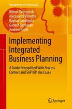 Implementing Integrated Business Planning: A Guide Exemplified With Process Context and SAP IBP Use Cases