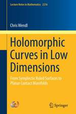 Holomorphic Curves in Low Dimensions: From Symplectic Ruled Surfaces to Planar Contact Manifolds