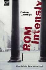 Zaimoglu, F: Rom intensiv