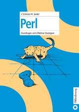 Perl: Grundlagen und effektive Strategien