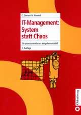 IT-Management: System statt Chaos: Ein praxisorientiertes Vorgehensmodell