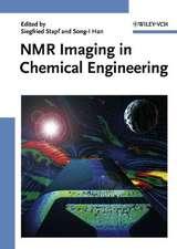 NMR Imaging in Chemical Engineering