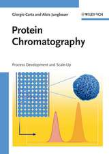 Protein Chromatography: Process Development and Scale–Up