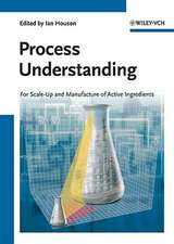 Process Understanding: For Scale–Up and Manufacture of Active Ingredients