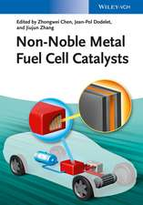 Non–Noble Metal Fuel Cell Catalysts