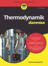 Thermodynamikfür Dummies