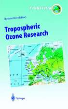 Tropospheric Ozone Research: Tropospheric Ozone in the Regional and Sub-regional Context
