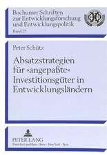 Absatzstrategien Fuer -Angepasste- Investitionsgueter in Entwicklungslaendern