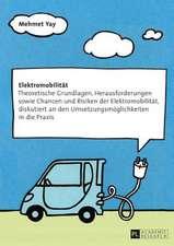 Elektromobilitaet:  Theoretische Grundlagen, Herausforderungen Sowie Chancen Und Risiken Der Elektromobilitaet, Diskutiert an Den Umsetzun