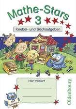Mathe-Stars 3. Schuljahr - Übungsheft
