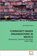 Community-based Organizations In Mexico