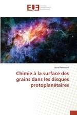 Chimie a la Surface Des Grains Dans Les Disques Protoplanetaires:  Problemy Trudovykh Resursov