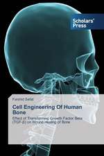 Cell Engineering of Human Bone:  A Study on Their Performance