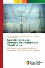Caracteristicas de Sistemas de Transmissao Tetrafasicos:  Praticas E Discursos