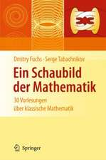 Ein Schaubild der Mathematik: 30 Vorlesungen über klassische Mathematik
