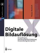 Digitale Bildauflösung: Grundlagen, Auflösungsbestimmung, Anwendungsbeispiele