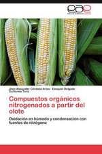 Compuestos Organicos Nitrogenados a Partir del Olote:  Principios E Praticas