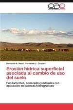 Erosion Hidrica Superficial Asociada Al Cambio de USO del Suelo:  Un Analisis Comparativo