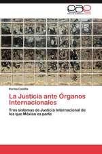 La Justicia Ante Organos Internacionales