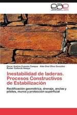 Inestabilidad de Laderas. Procesos Constructivos de Estabilizacion:  Limite, Vinculo O Geopolitica?