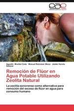 Remocion de Fluor En Agua Potable Utilizando Zeolita Natural:  Horizontal y Vertical