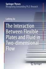 The Interaction Between Flexible Plates and Fluid in Two-dimensional Flow