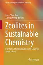 Zeolites in Sustainable Chemistry: Synthesis, Characterization and Catalytic Applications