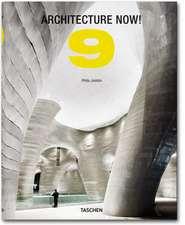 Architecture Now! Vol. 9:  Rei Kawakubo