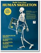 Build Your Own Human Skeleton - Life-Size!:  The Greatest Movie Never Made